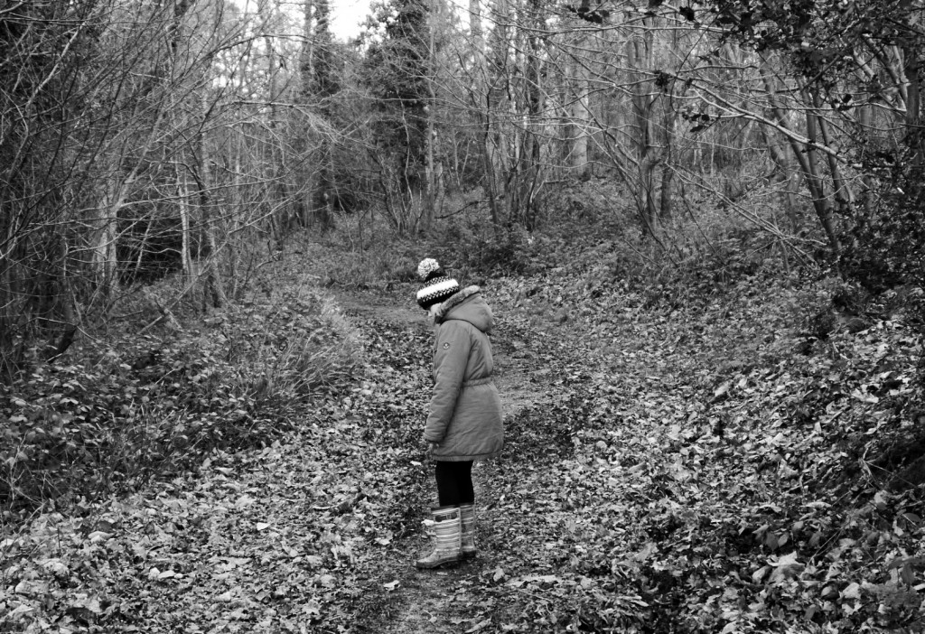 black and white walk in the woods